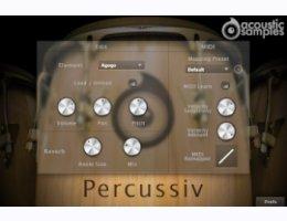 Acousticsamples Percussiv