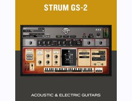 Applied Acoustics Systems Strum GS-2