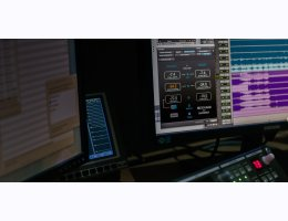 Nugen Audio LM-Correct with DynApt extension